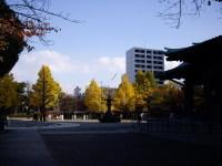 Ryoougoku0851