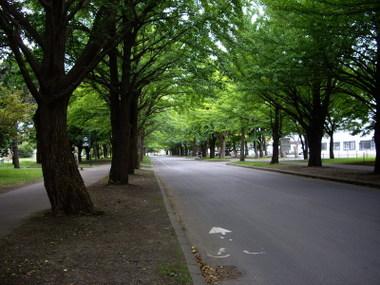 Hokkaidoudaigaku01