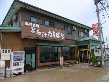 Tonshirunotachibana00