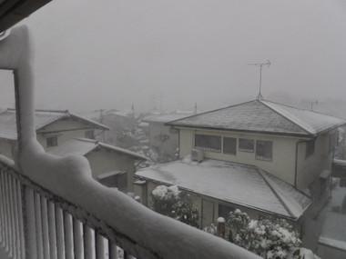Snowyokohama140201