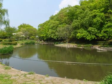 Sakuradaikouen01