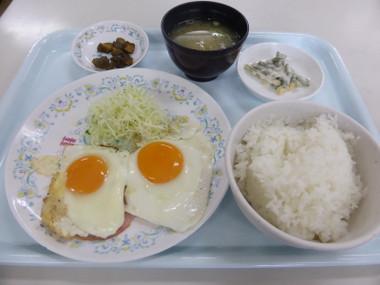 Hatobasyokudou04
