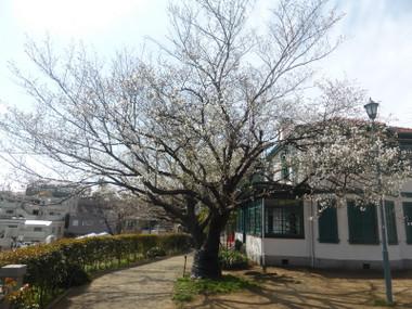 Itariayama2015032901