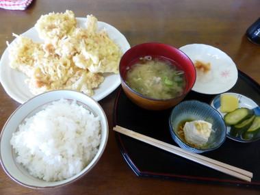 150604inuwakasyokudou01