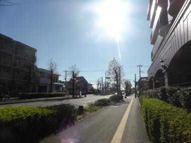 151205yachiyoshi01