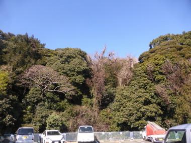 180113hitorizawa00