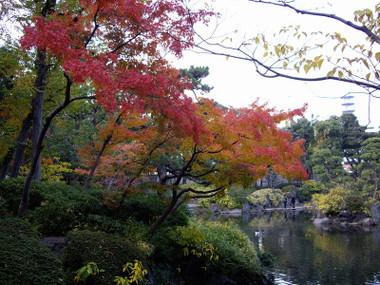 Ryougoku0874