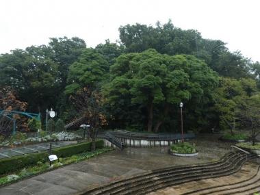 201017shinyamashita01