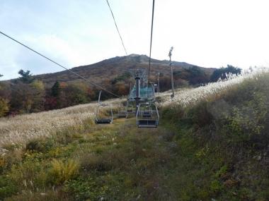 201101daisen08