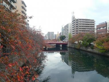 201107oookagawa01
