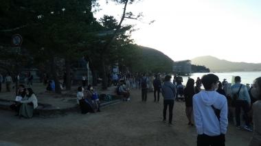 201121miyajima09