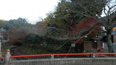 201121miyajima13